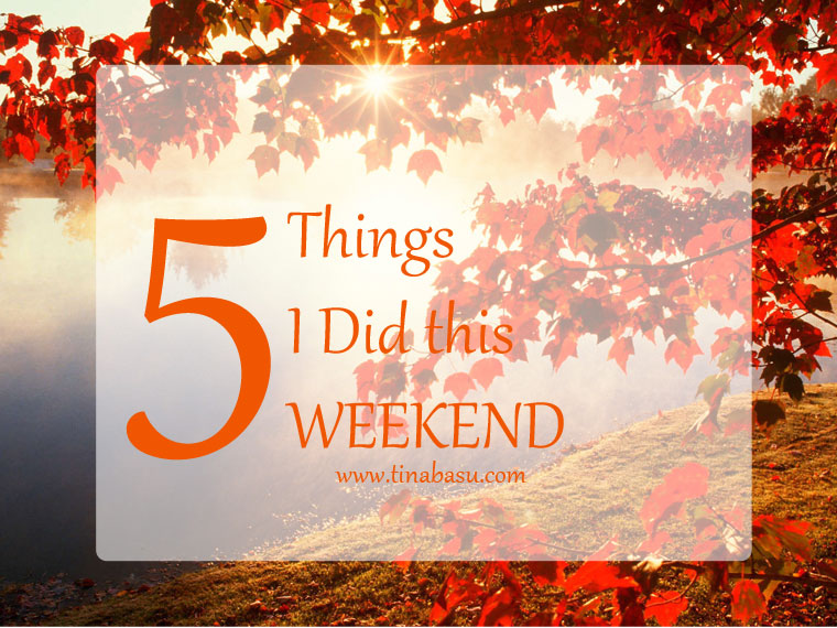 Five things I did this Weekend Did I tell you my parents are visiting me now/ I love it when my parents come down and spend a week or two with us. They are very outgoing and love travelling. So when they are here, you can't manage to sit at home at all. So we have plans to go out almost every other day. Having Wonderful Food My mom's a great cook and makes awesome Bengali dishes. They travelled in train only so that they could carry fresh fish, mutton, LOADS OF SWEETS and tons of presents for Bluey. Blame the baggage policy of airlines! So we gorged on delectable home-made restaurant quality food – mom style. There was mutton chanp, Chingri Malaikari, Chitol Kalia – a gastronomic pleasure! All of these will be posted in the food blog – so don't worry Continued With Food at Barbeque Nation Barbeque Nation – the famous barbeque fine dining chain – has open right opposite our apartment. And given how big foodies we are how can we not have a Sunday Barbeque feast. Whenever I am at a BBQN I always instruct the servers – ONLY FISH, CHICKEN, PRAWNS ON THE GRILL. Yes I am a carnivore and I don't want corn on the cob, mushrooms, pineapples, or anything vegetarian sitting in the skewers on my grill! I had 12 prawns yesterday! Okay they weren't jumbo prawns. The only vegetarian started I like in BBQN is the Cajun Spiced Potato – so that little bit of that. Even Bluey enjoyed some Tandoori Fish and French Fries. But he didn't like any dessert! Instead licked on a lollipop for a while! Gardening I absolutely love gardening – sowing seeds, watering watching the flowers bloom. I am currently having three varieties of rose in my container garden – a scarlet, a pink and white blend and yellow. The scarlet ones are pretty huge and they are blooming currently. I am growing some herbs and vegetables for the kitchen – organic and pesticide free. Did You Know – Mint is extremely easy to grow? Anyone can grow it. I'll do a post on it. I replanted some mint this weekend. Falling in love with pencil and paper again Shinjini a.k.a Modern Gypsy inspired me to get me back to the art mode again. I had not sketched, doodled, painted with a pencil or color on paper for a long long time. Digital art had taken over everything – even professionally. But I started picking up the pencil again and made some sketches. This is what I did this Saturday. Inspiration from Google though! Started a New Book My last romance read – After You by Jojo Moyes was a disaster. I had loved Me Before You – the first book of the series but this book only made it clear why you shouldn't write a sequel unnecessarily. It went so out of place I left in between for quite some time and finished it only because I wanted to get over with it! So now I started with The Girl Who loved a Pirate by Kulpreet Yadav. I am switching back to reading thriller and mystery – that's my favorite genre. I hope this will be good.