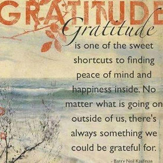 gratitude quote