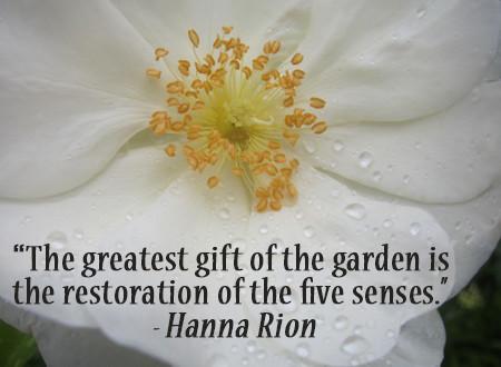 gardening-quotes3-450x330