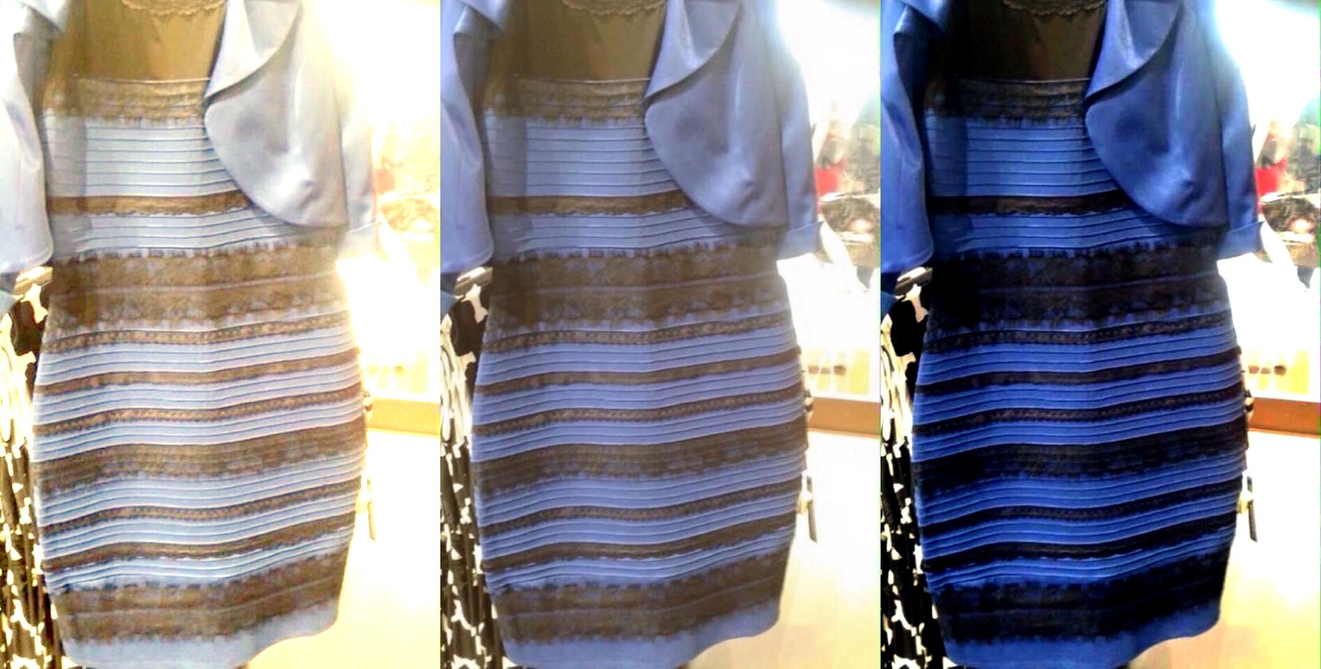 internet fads - the dress
