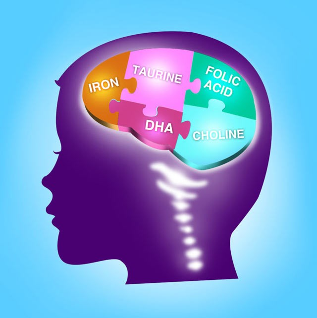 DHA for Child's Brain Development