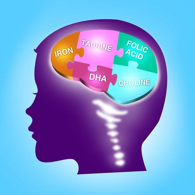 DHA for Child's Brain Development