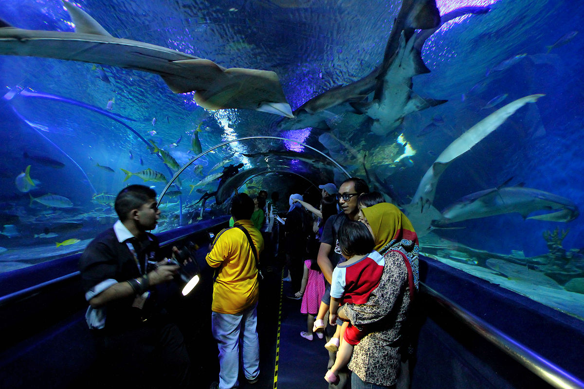 aquaria KLCC - places to visit in Malaysia